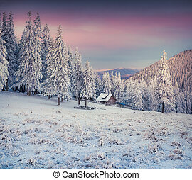 Old farm in the Carpathian mountains.