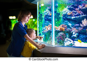 Kids watching fishes in aquarium - Happy laughing boy and...