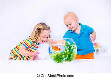 Kids watching fish bowl - Two children, brother and sister,...