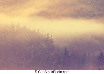 schöne, dunstig, Morgen, Berge