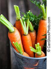 Fresh organic carrots