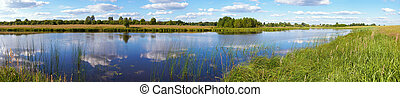 Summer rushy lake panorama view with clouds reflections....