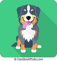 bernese Mountain Dog dog icon flat design - Dog Bernese...