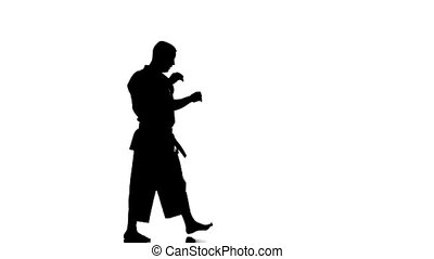 Silhouette of a karate man exercising against white...