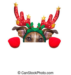 reindeer dog behind a blank banner as a christmas theme,...