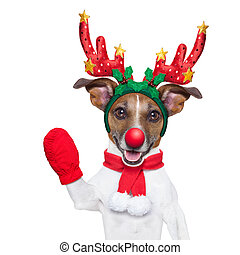 reindeer dog with a red nose and waving hand isolated on...