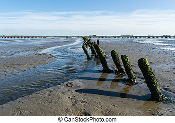 mud flats - Coastal Feature of the dutch mud flats