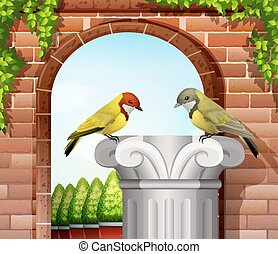 Two birds near the stonewall