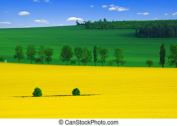 Colors of the spring - Beautiful spring landscape of three...