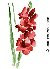 Watercolor gladiolus flower