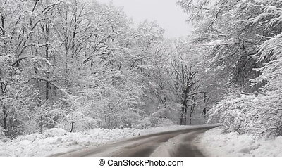 Snowy winter road - Driving in the snowy winter road