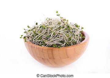 broccolis sprouts
