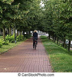 Bike lane - Central perspective of bike or bicycle lane