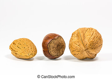 Three nuts with white background.