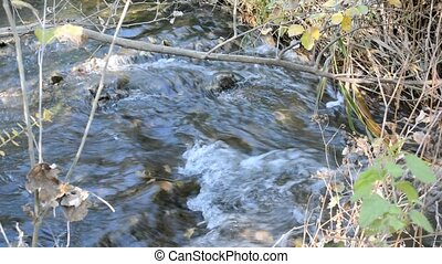 Creek roaring in the autumn woods - Fast stream in the...