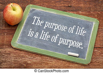the purpose of life concept - the purpose of life is a life...