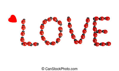 love formed with ladybugs - letters from ladybug shape the...