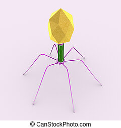 Bacteriophage - A bacteriophage is a virus that infects and...
