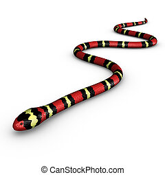 Coral snakes are a large group of elapid snakes that can be...