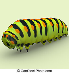Caterpillar is the common name for the larvae of members of...
