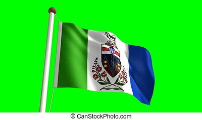 Yukon flag