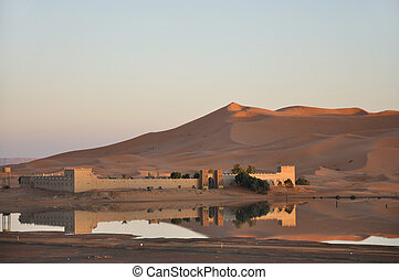 Oasis in Sahara desert, Morocco Africa