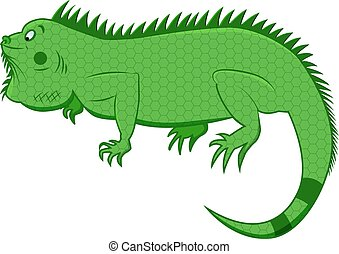iguana - lovely illustration of funny iguana on isolated...