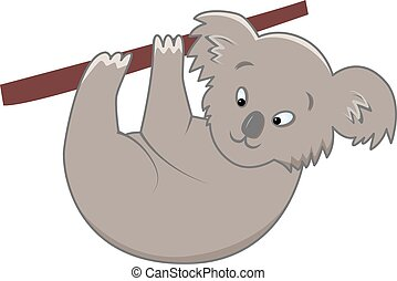 koala - vector illustration of funny grey koala on isolated...