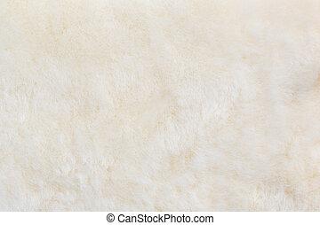algodón, lana, textura, para, Plano de fondo,