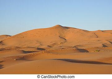 Sand dunes in the Sahara desert, Merzouga Morocca Africa