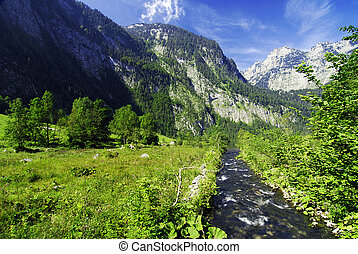Alpine brook - Beautiful Alpine brook with green meadow and...