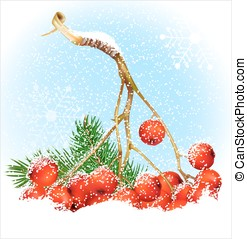 Christmas snow background with rowan Vector illustration