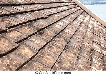 viejo, arcilla, techo, azulejos, con, molde, y, algas, en,...