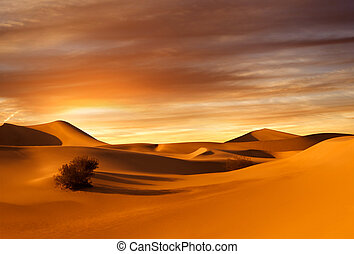 sunset dunes - view of nice sands dunes at Sands Dunes...