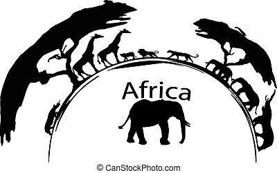 africa wildlive illustration