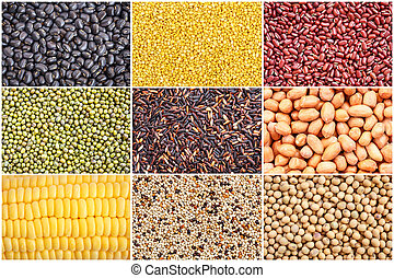 Set of various grain, beans, rice and corn