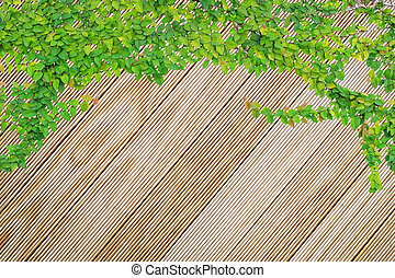 Pinewood texture and background