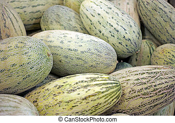 Background of oblong melons - Heap oblong melons. Nature...