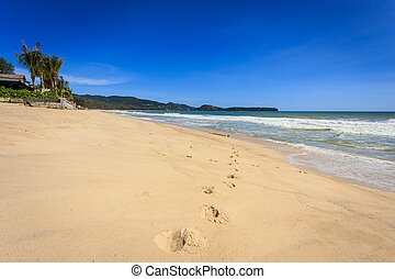 Tropical beach with clear sky