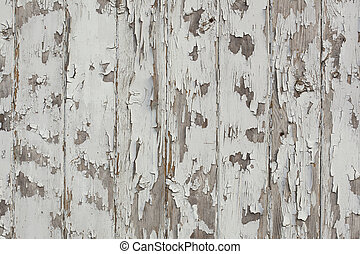 White paint peeling off grunge wood wall - Old wood wall...