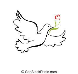 鳩, の, 平和,
