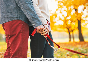 Closeup on young couple holding leash together in autumn...