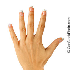 Beautiful female hands with french manicure isolated on...