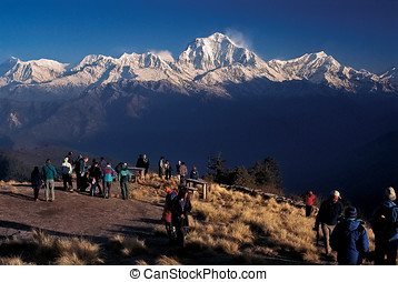 Mt. Dhaulagiri, Nepal - Dhaulagiri Range as seen from Poon...