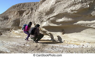 Paleontological Research - Two paleontologist considering...