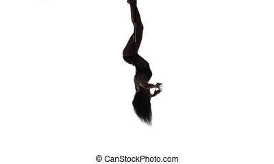 Aerial acrobat woman on circus stage Silhouette on a white...