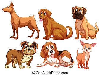 Dogs - Illustration of different type of dogs