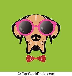 Vector images of a dog wearing glasses on green background.