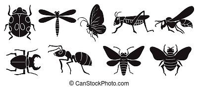 A group of insects on a white background