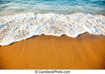 Wave on sandy beach - Wave washing up onto a sea shore in...
